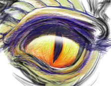 dragons eye sketch